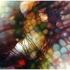 abstract-painting-multi-coloured-with-lilac-by-george-scicluna